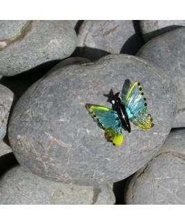 D Vlindersteen E