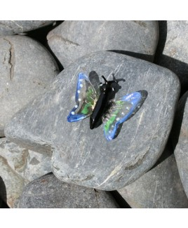 D Vlindersteen A