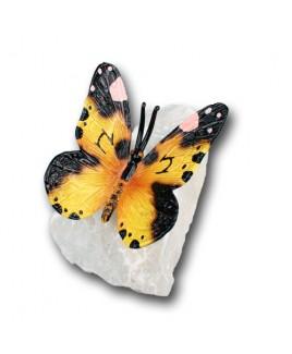 B Vlinder op rots B